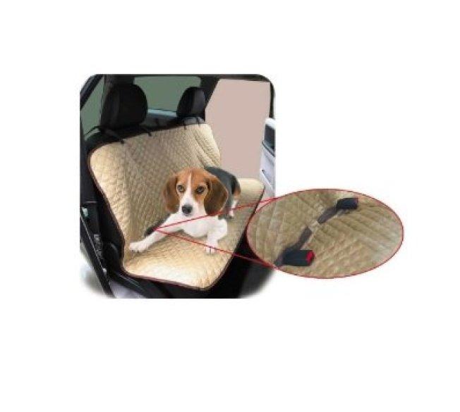 como viajar de carro com cachorro capa