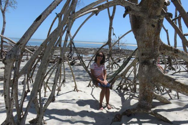 o que fazer em jericoacoara rede manguezal camocim