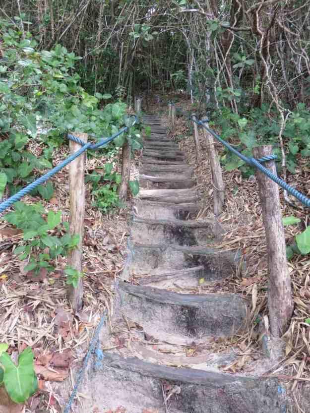 praias de pipa escada santuario praia do madeiro