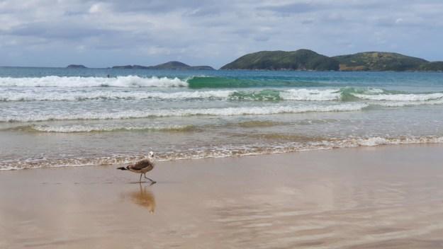praia do peró praias de cabo frio