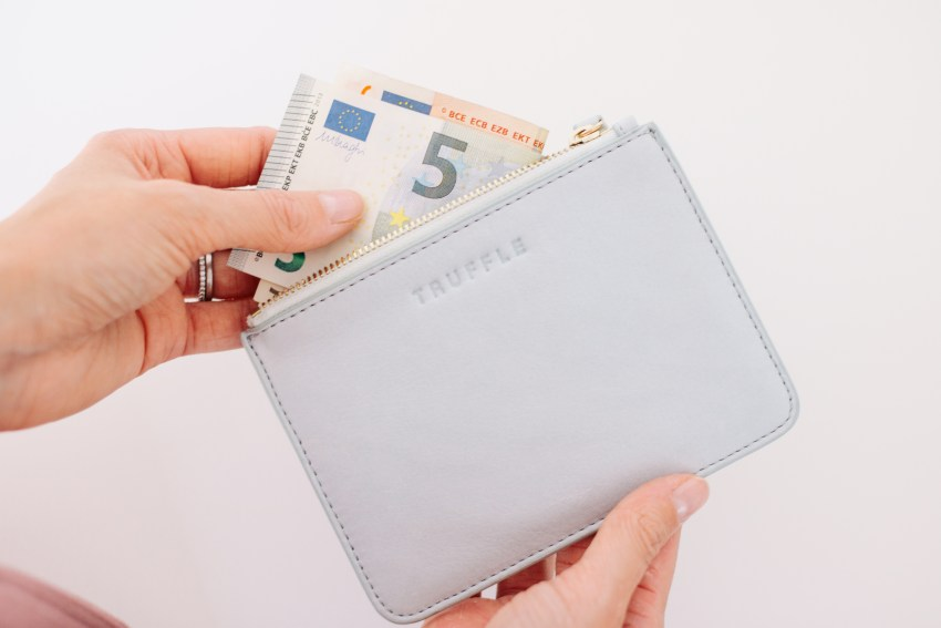 Truffle Privacy Coin Pouch and Clarity Clutch featured by top US travel and fashion blog, Viciloves