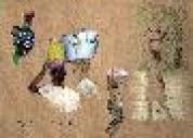 Schizzi d'Africa portatrici