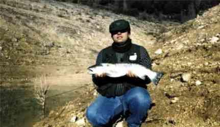 salmon5