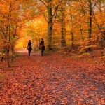 Ten Fun Outdoor Activities to Stay Active Throughout the Fall