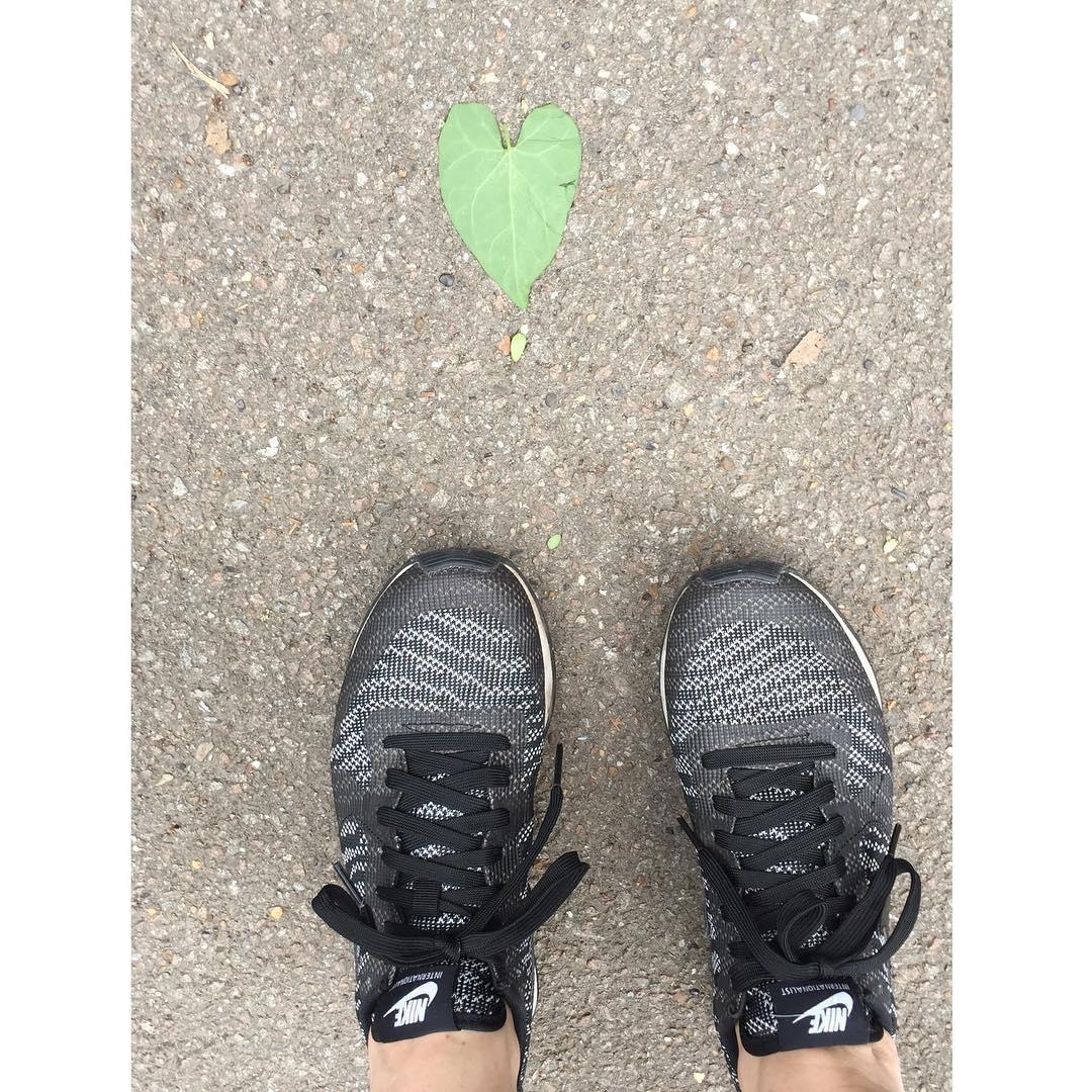LOVEly walk   love walk leaf heart