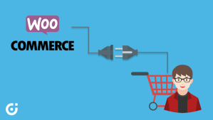 best WooCommerce plugin for your store in 2019