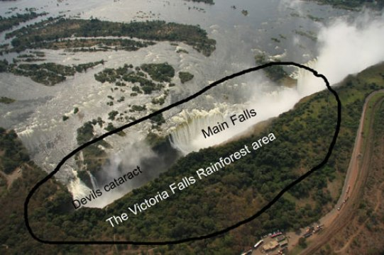 The Victoria Falls Rainforest