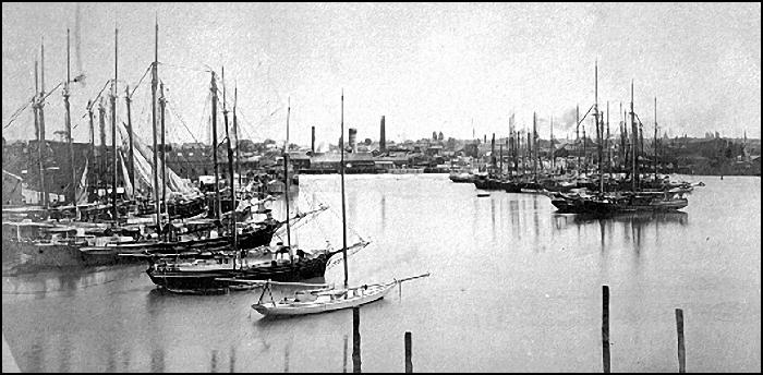 Victoria's sealing fleet