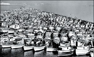 Over eighteen-hundred Japanese fish boats were confiscated in World War II