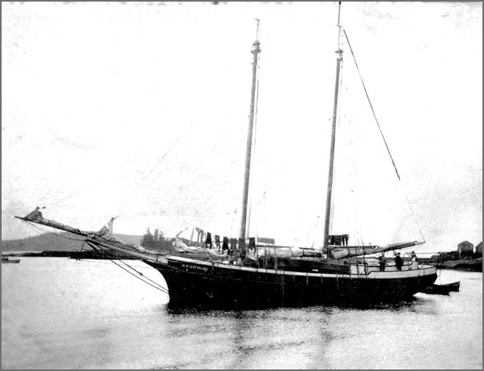 Sealing schooner WP Sayward