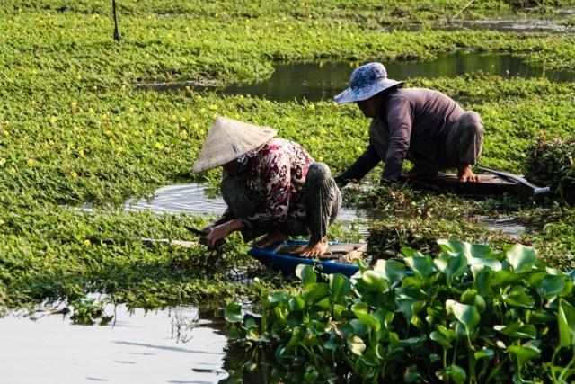 River Life - Chau Doc - James Pham-73