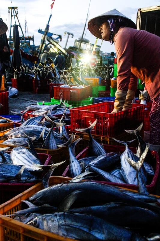 Victoria Phan Thiet - Phan Thiet Fish Market - James Pham-27