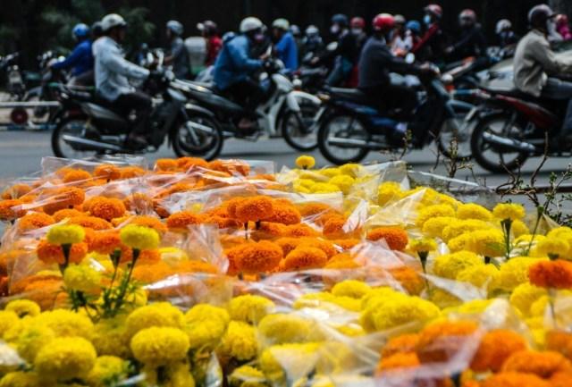 Tet Flower Market - Gia Dinh - James Pham-11