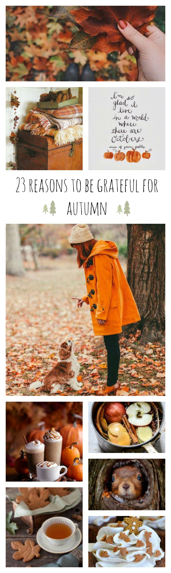 23 reasons to love autumn
