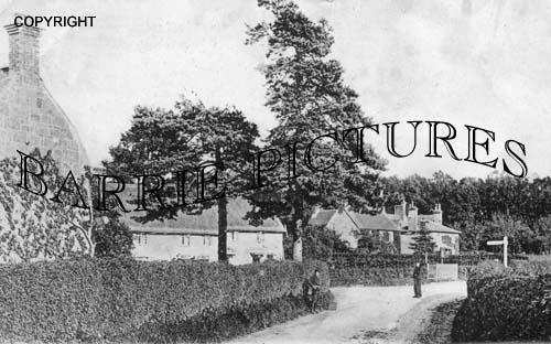 Motcombe, Village c1905