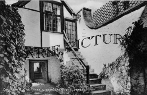 Sherborne, The Tree Wishes Courtyard c1955