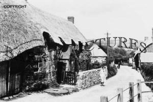 Bingham's Melcombe, c1920