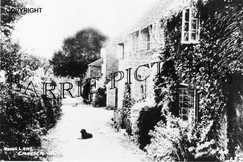 Chideock, Ruins Lane c1890