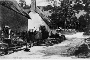 Piddletrenthide, Village c1900