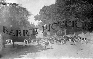 Tolpuddle, South Dorset Foxhounds c1905