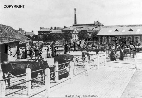 Dorchester, Market Day 1904