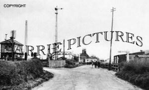 Wool, Railway Station c1890