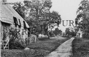 Bloxworth, Village c1930