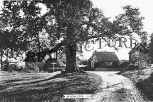 Bedchester, c1950