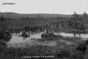 Verwood, Higher Moor c1930