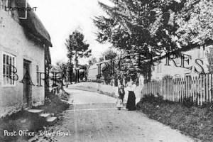 Tollard Royal, Post Office c1900
