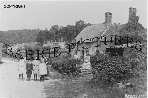 Bawdrip, Village c1900