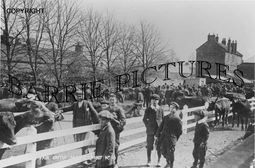 Chard, Fair Cattle Market 1907