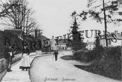 Ditcheat, Village c1900