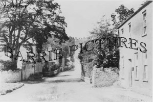 Wrington, Village c1900
