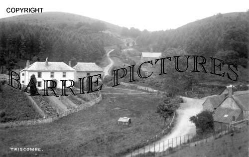 Triscombe, Village c1930