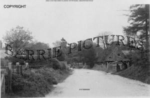 Dummer, Village c1910