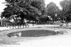 Preston Candover, Village Pond c1900
