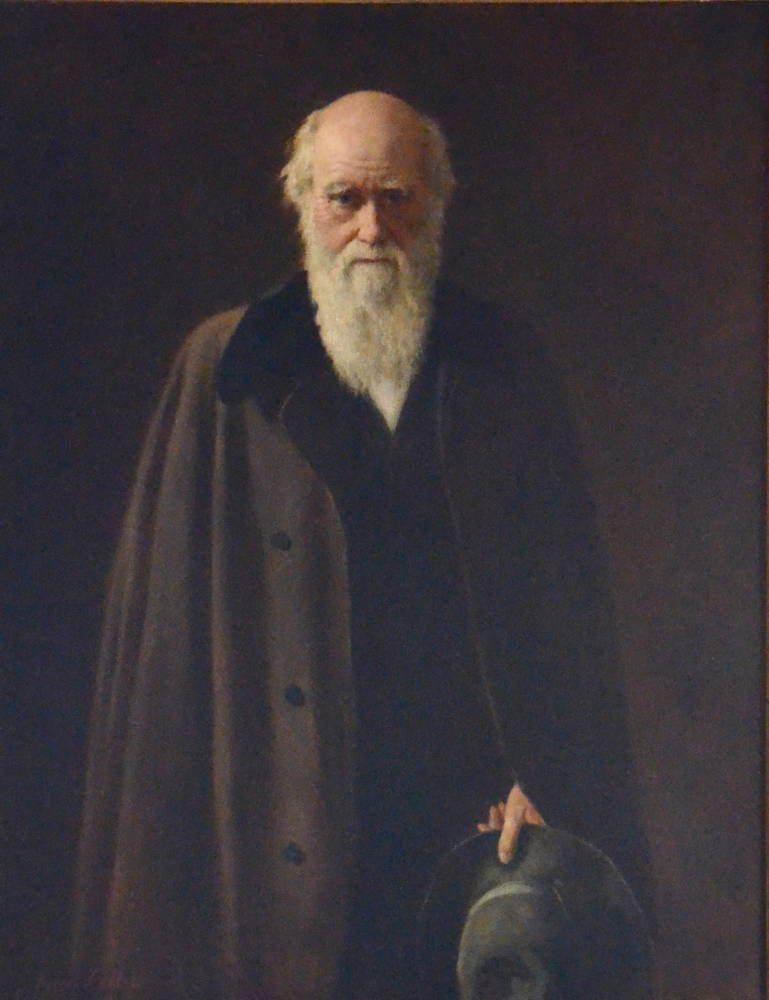 Darwin, painted by Millais, from Victorian Web