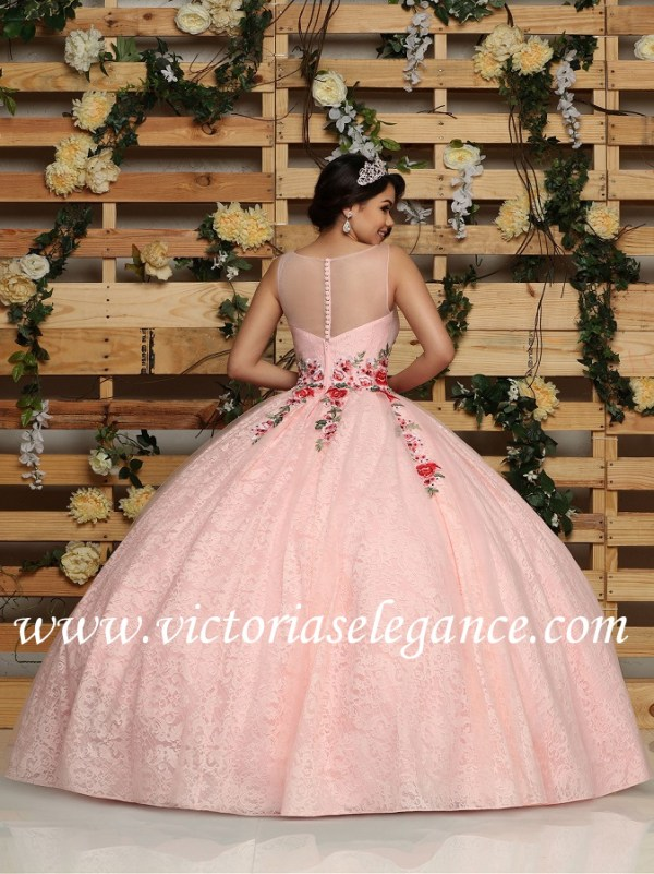 b2e037cac9 Tulle Lace Ball Gown W Embroidered Applique Q by DaVinci 80418 ...