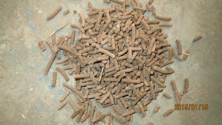 cattle feed making process