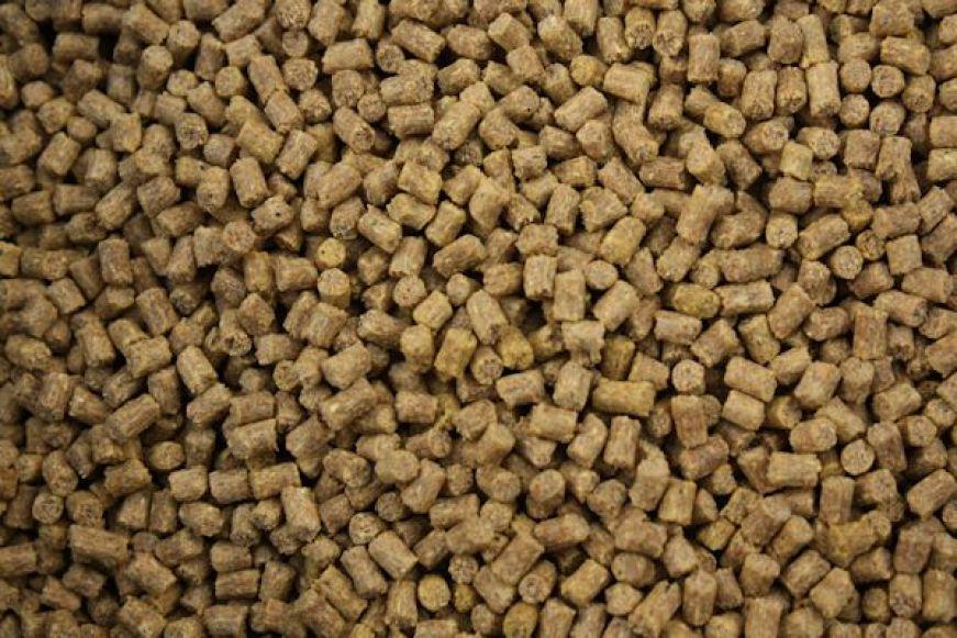 cattle feed pellet mill for sale