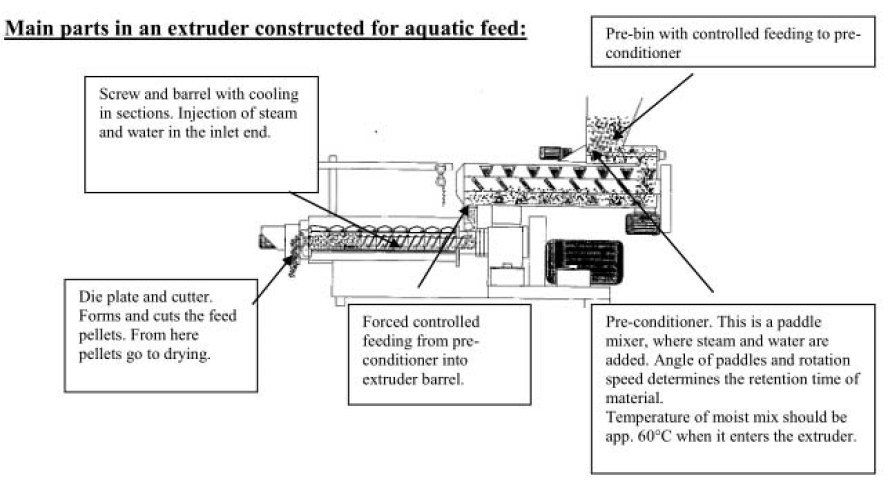 fish feed extrusion process video