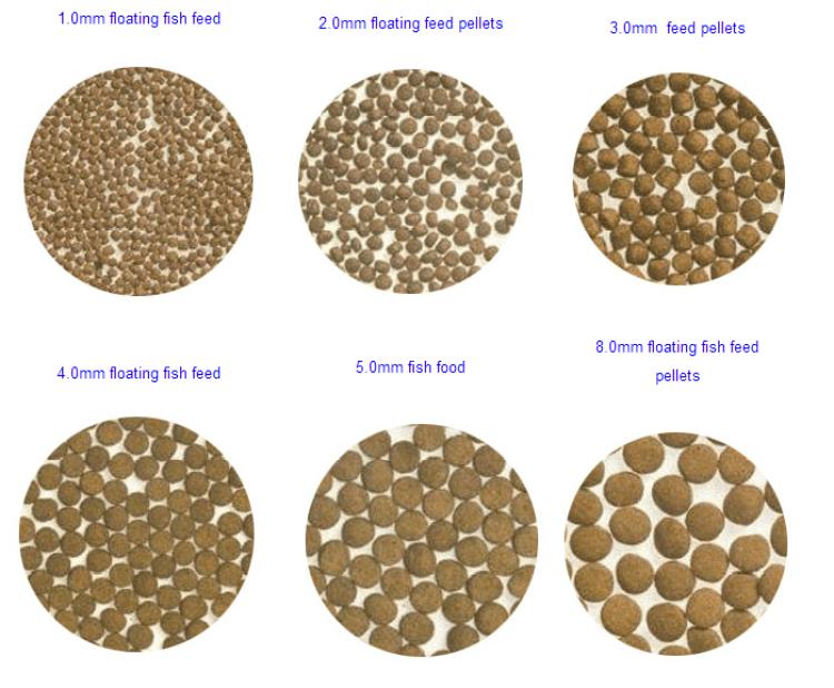 30-50KG/H fish pellet mill