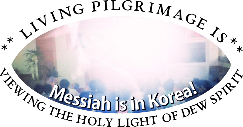 living pilgrimage is viewing the Holy light