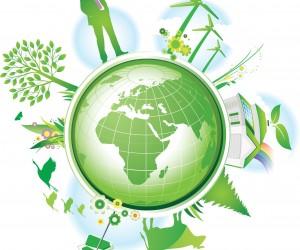 Neutralização de carbono