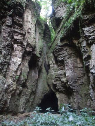 Salto das Andorinhas - Ascurra - SC