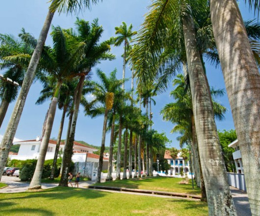 Rua das Palmeiras - Joinville - SC