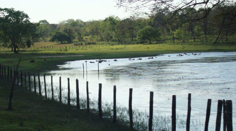 Viagem a Bonito e Pantanal - MS