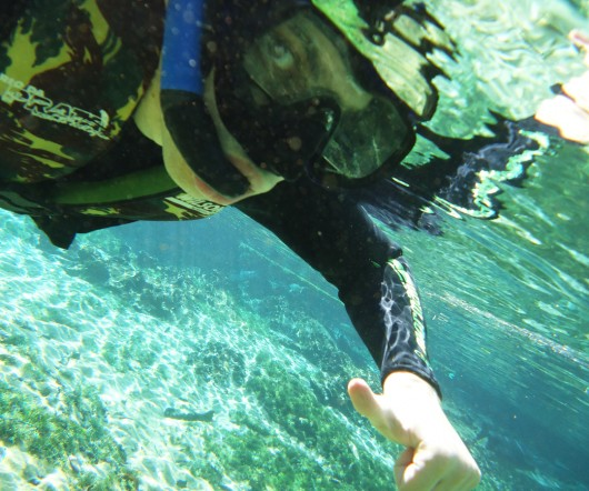 Snorkel - Rio da Prata