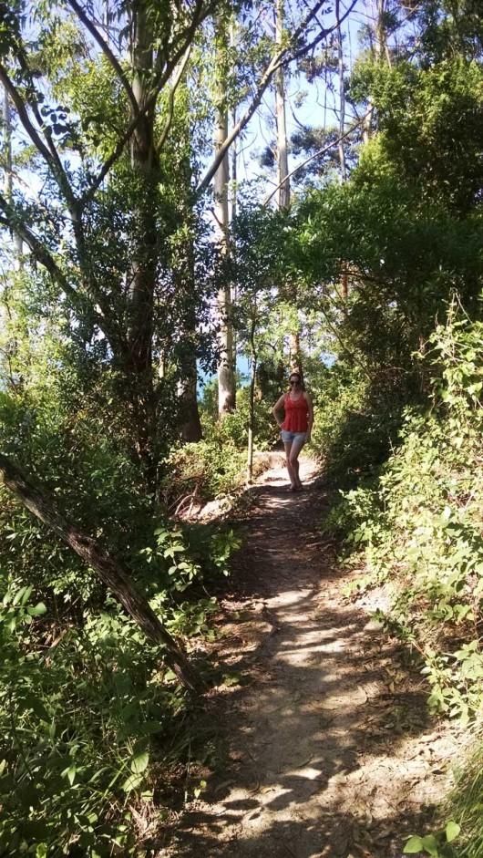 Natureza trilha Morro do Macaco